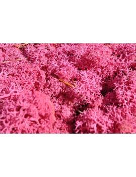 Mousse rose stabilisée 250gr