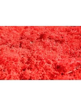 Mousse rouge stabilisée 250gr