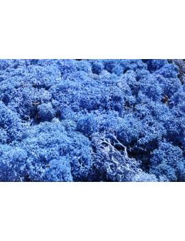 Mousse bleue stabilisée 250gr