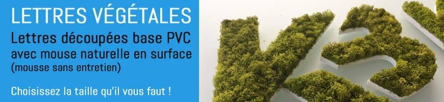 Lettres végétales découpées et logo végétal| Enseigne végétale mousse