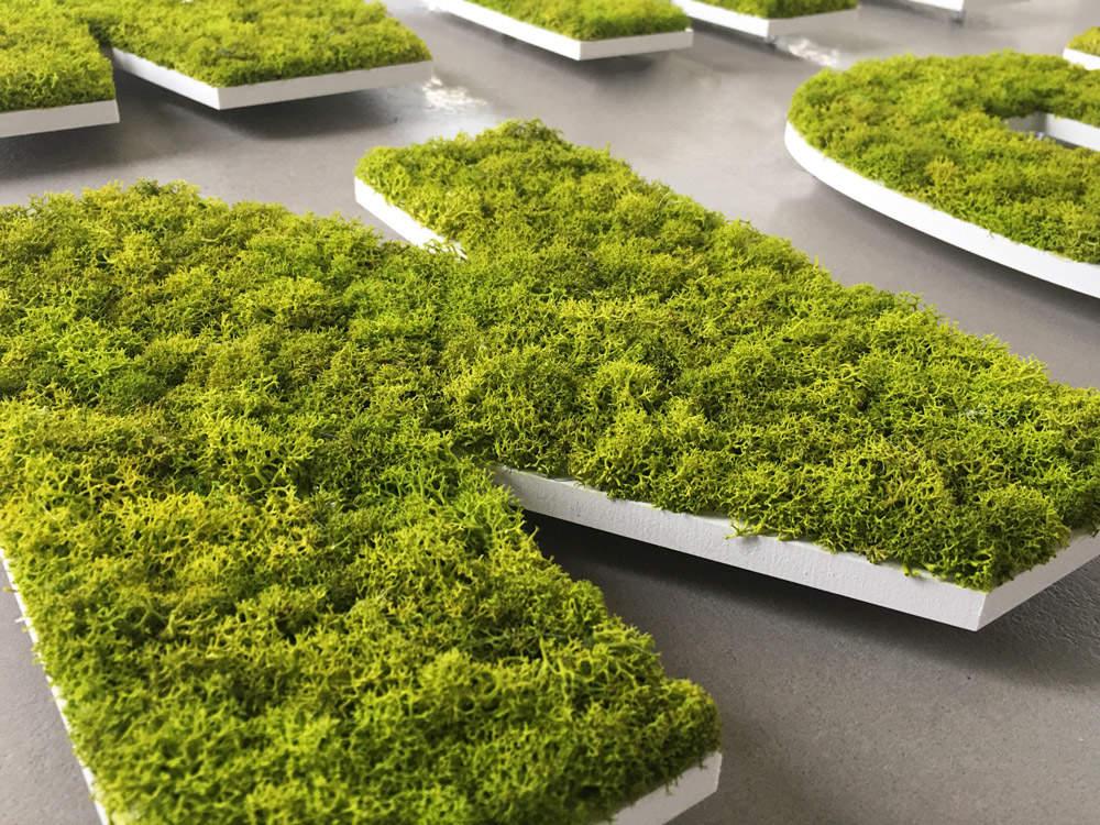 Détail lettres végétales en mousse verte stabilisée