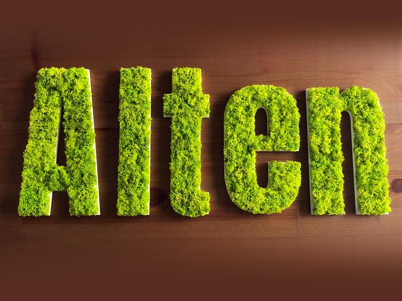 Lettres découpées en mousse végétale
