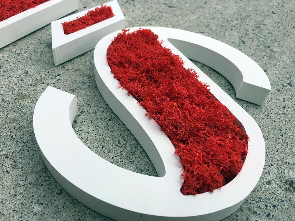 Lettre végétale en mousse rouge stabilisée