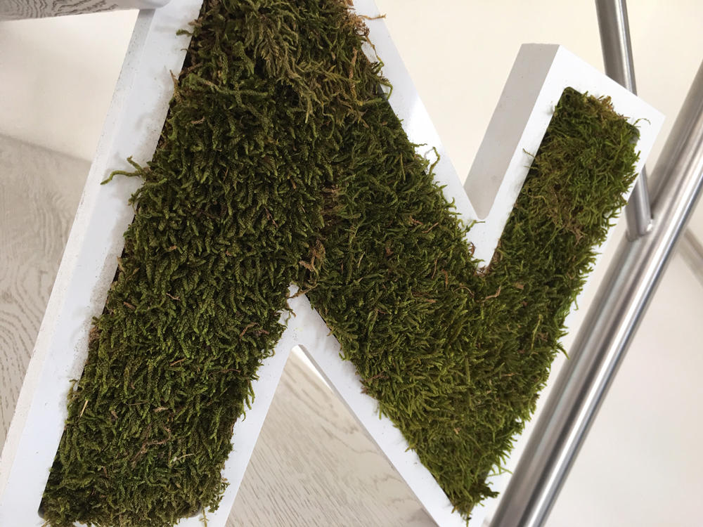 Lettre végétale en mousse de forêt plate stabilisée