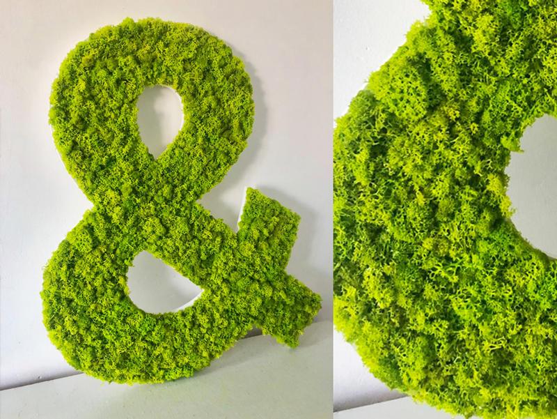 Logo et lettres découpées en mousse végétale
