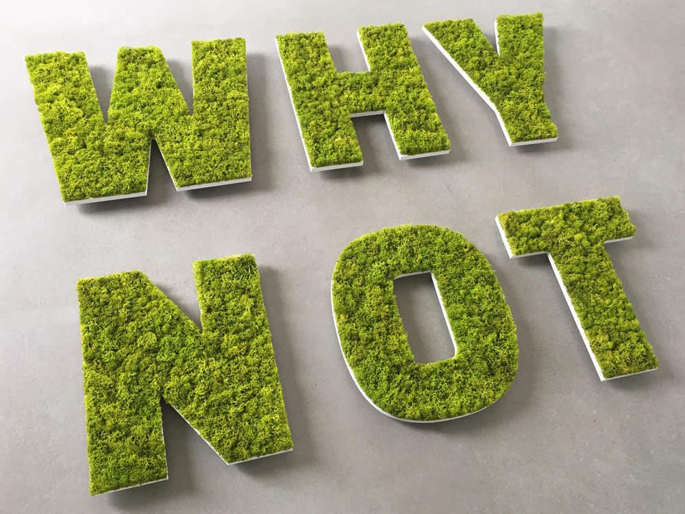 Lettres végétales stabilisées pour décorer vos intérieurs